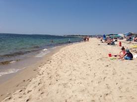 A Cape Cod beach